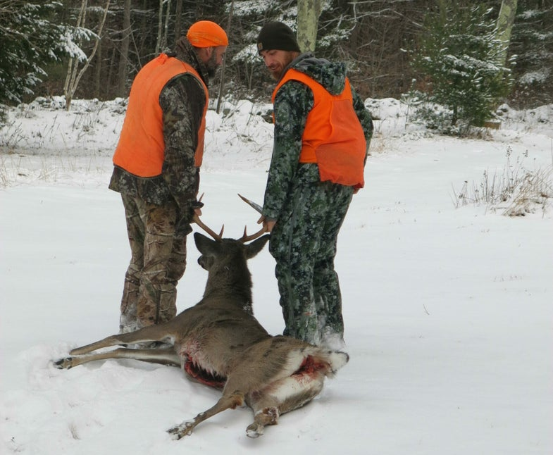 Pennsylvania Deer Hunters Set a Record for Tagged Whitetail Bucks Last Season
