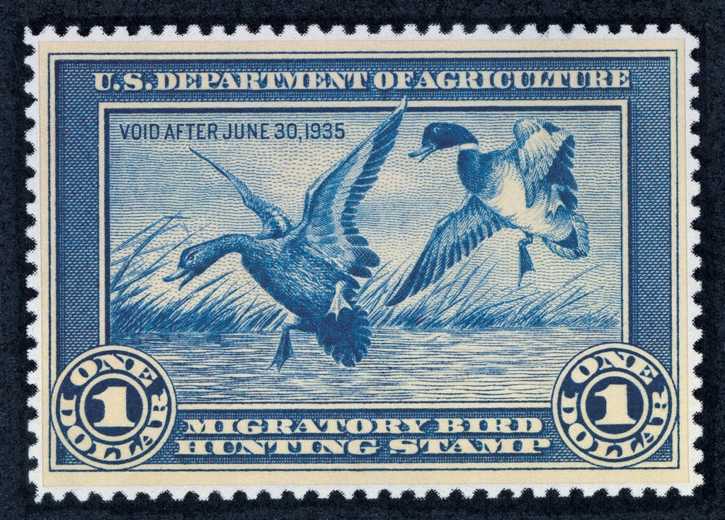 The first ever Federal Duck Stamp