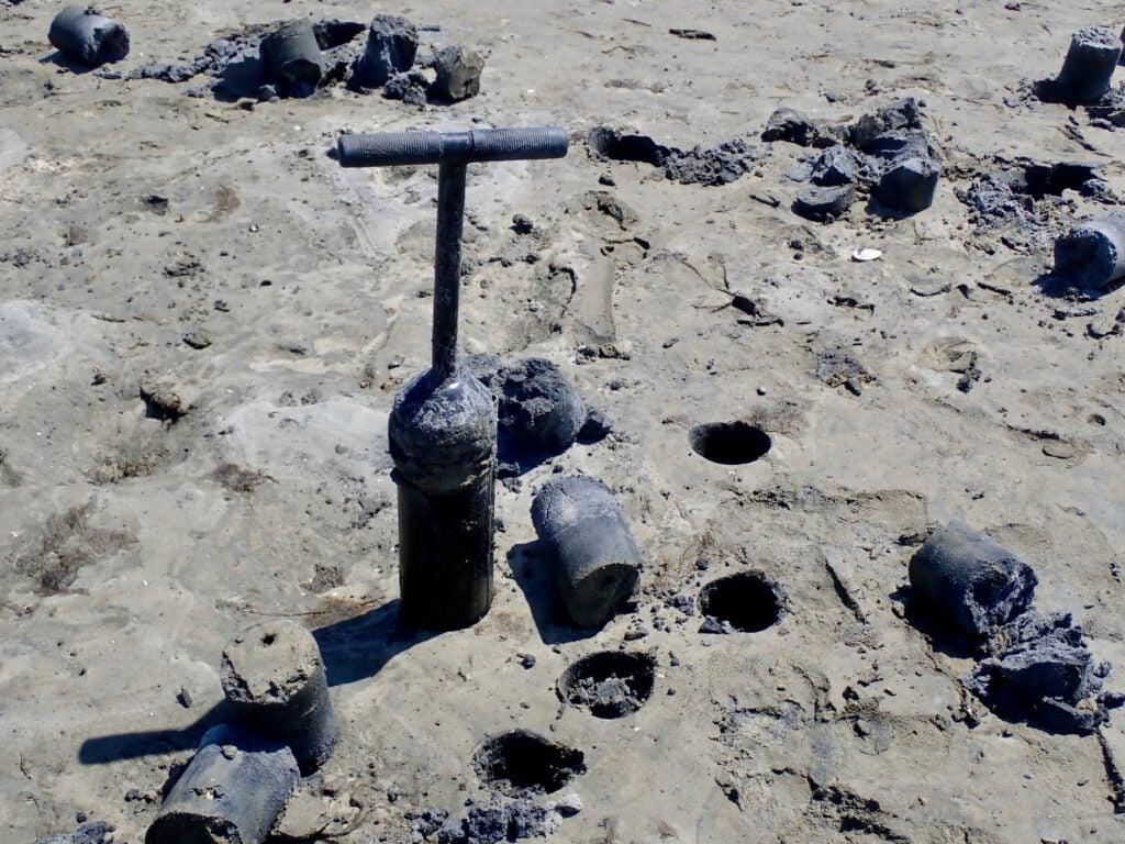 Clam gun on the beach.