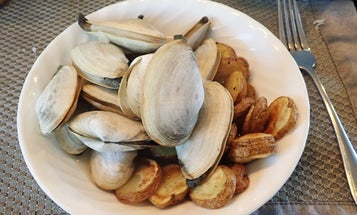 The Ultimate Guide to Digging for Clams