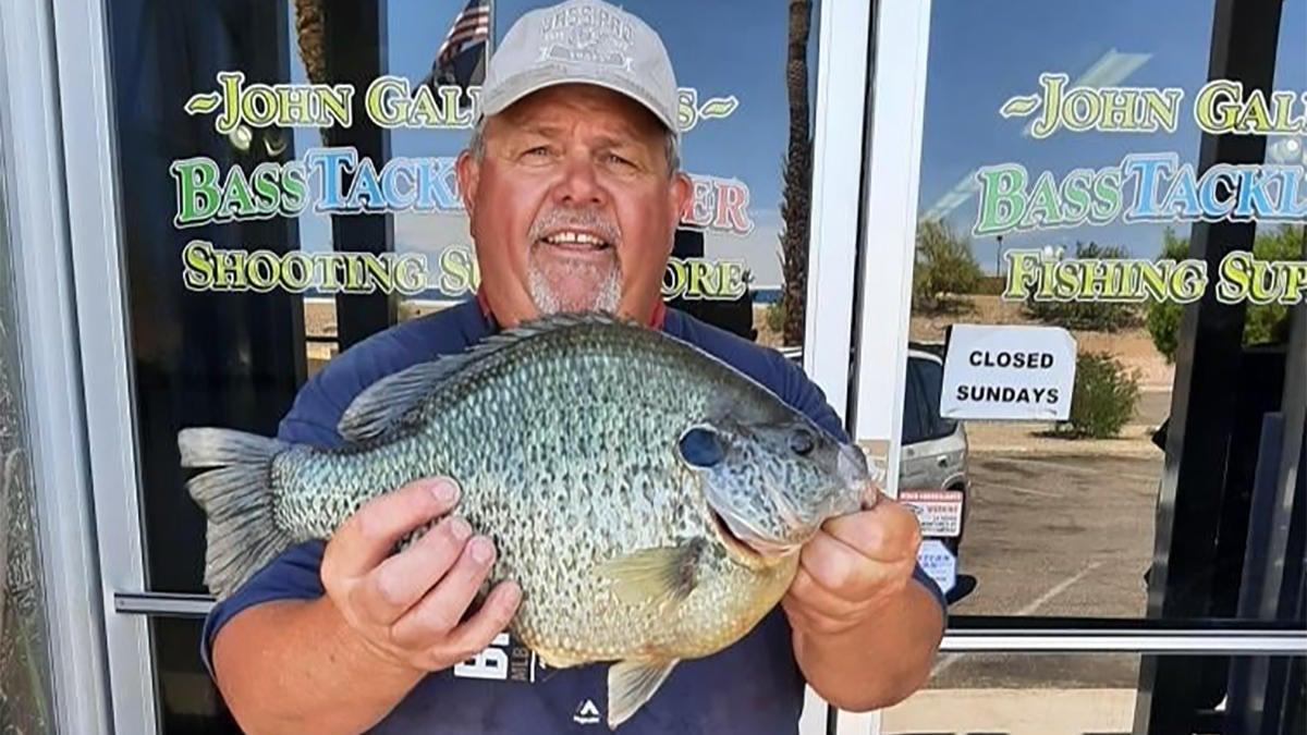 World Record Redear Sunfish Caught from Arizona's Lake Havasu