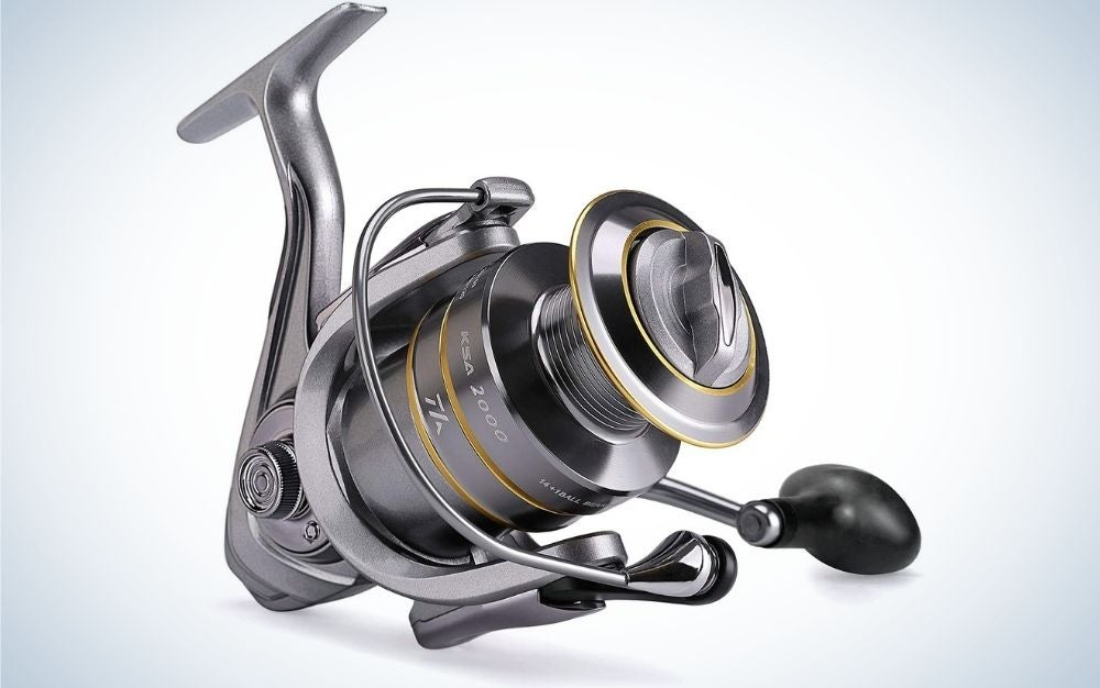 spinning reel best prime day deals