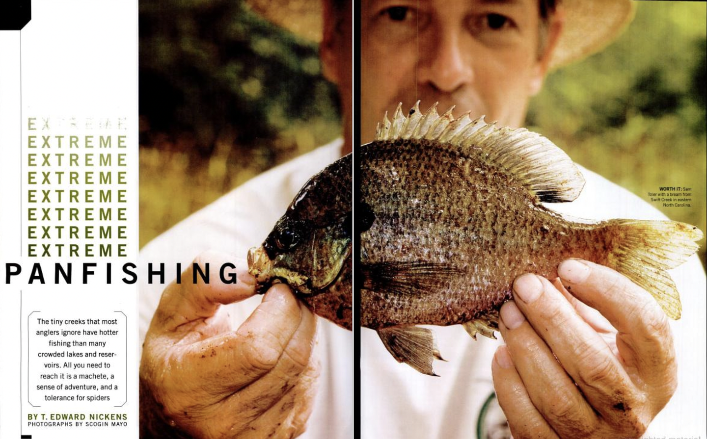 Flyfishing for panfish in the south.