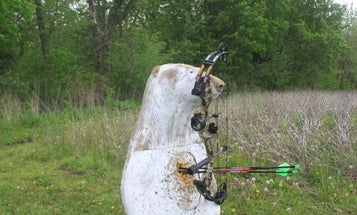 PSE Stinger Compound Bow Review: One of the Best Hunting Bow Options for Beginners