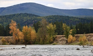 Home Waters: Fly Fishing on the Big Blackfoot River