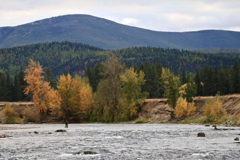 Writer John Maclean fishes the Big Blackfoot River