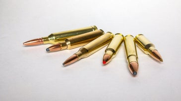 Six classic rifle cartridges.