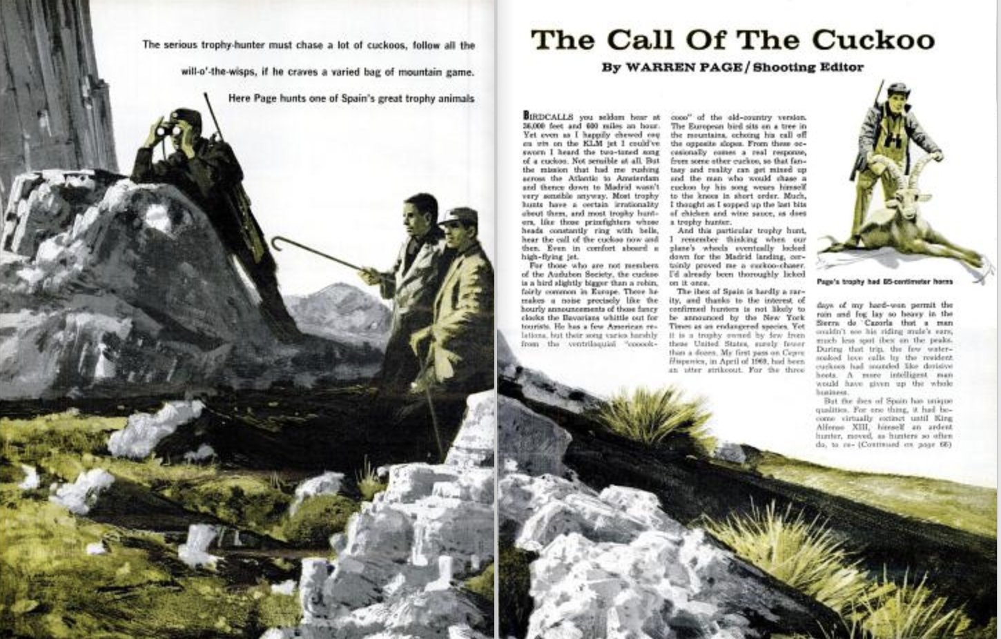 The Call of the Cuckoo by Warren Page