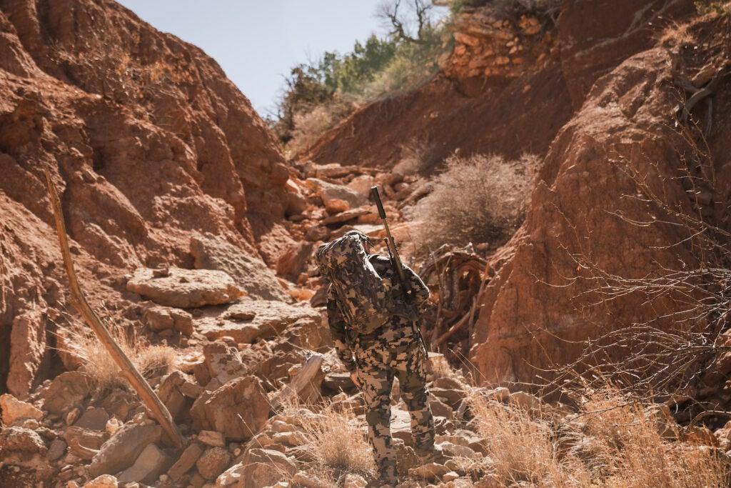 vertical texas aoudad hunting capstone