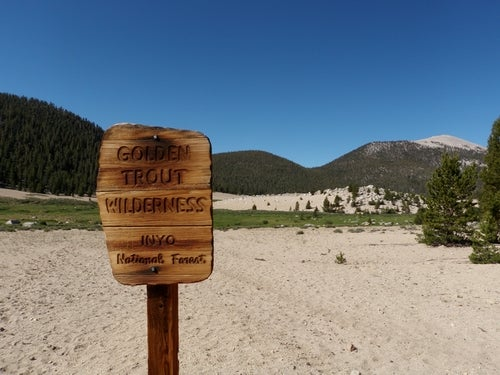 The golden trout wilderness in california.