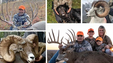 Boone and Crockett trophies.
