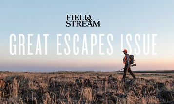 Introducing the New Digital Edition of Field & Stream