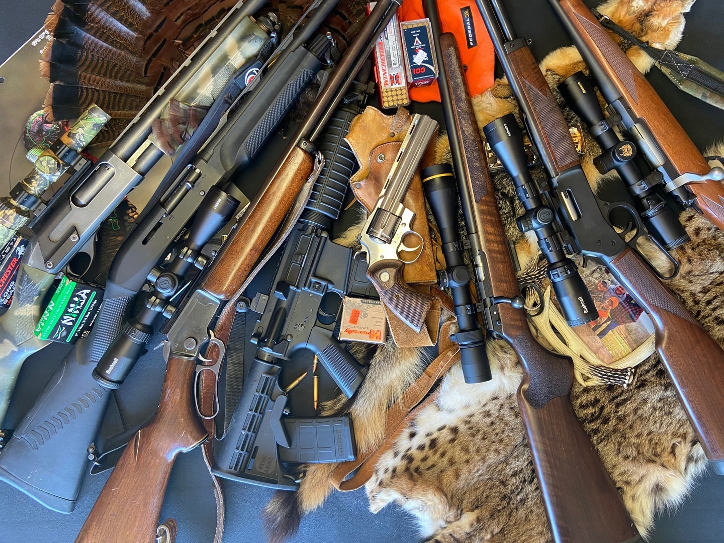 A collection of hunting guns