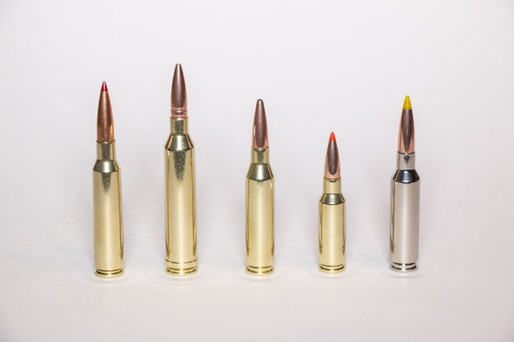 A variety of 6.5mm ammo