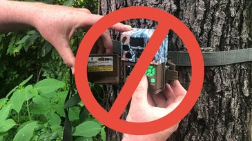 Trail Camera Ban