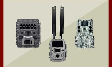 How to Choose the Best Trail Camera