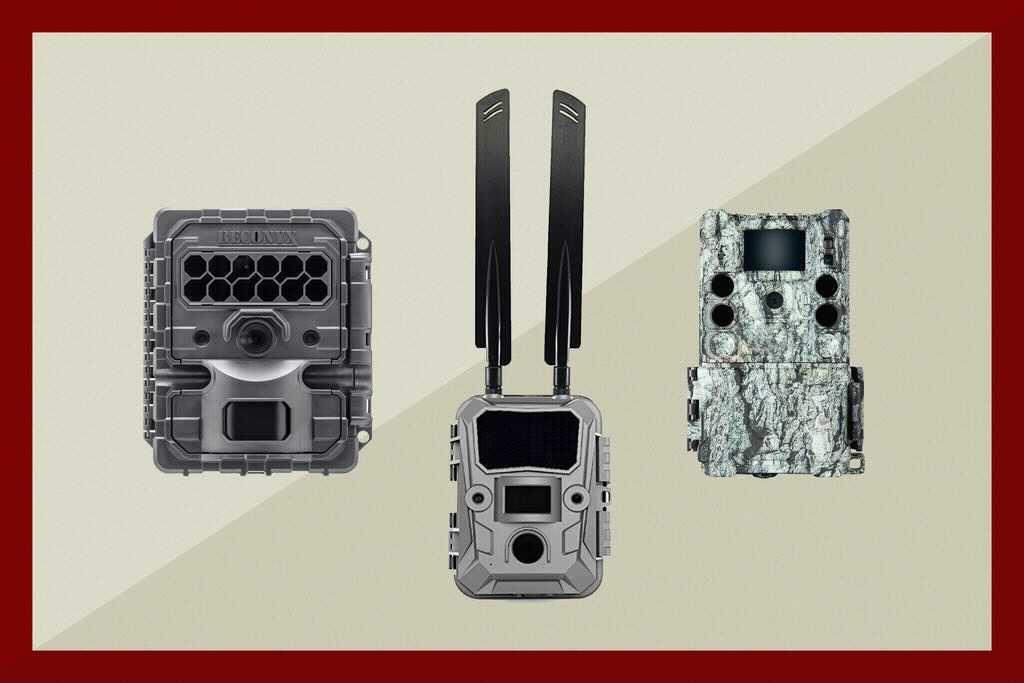 3 trail cameras
