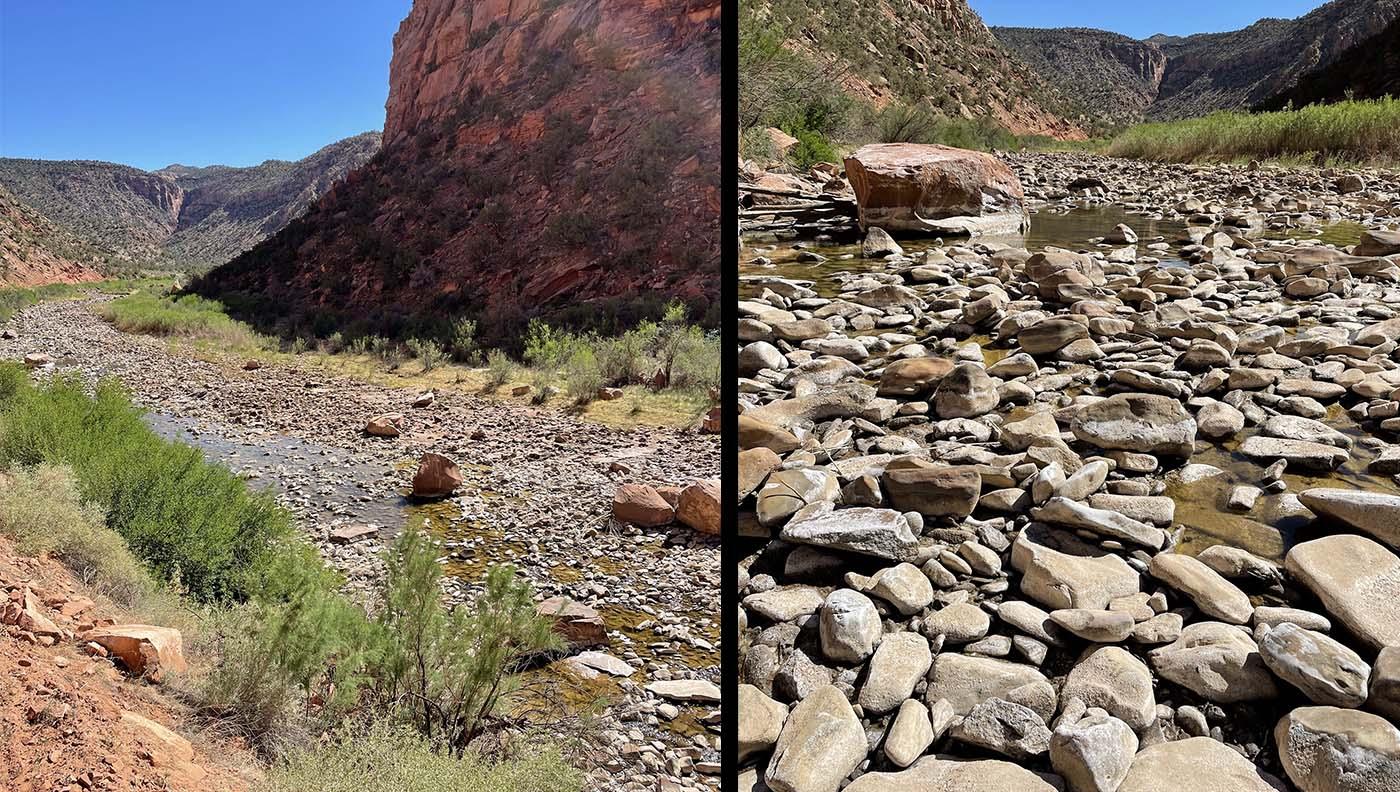 Dolores River in Colorado