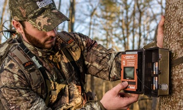 Where to Mount a Trail Camera