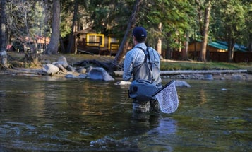 Best Trout Fly Rods for Streams, Rivers, and Lakes