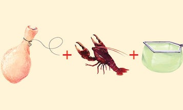 How to Catch Crawfish—for Bait or for Your Dinner