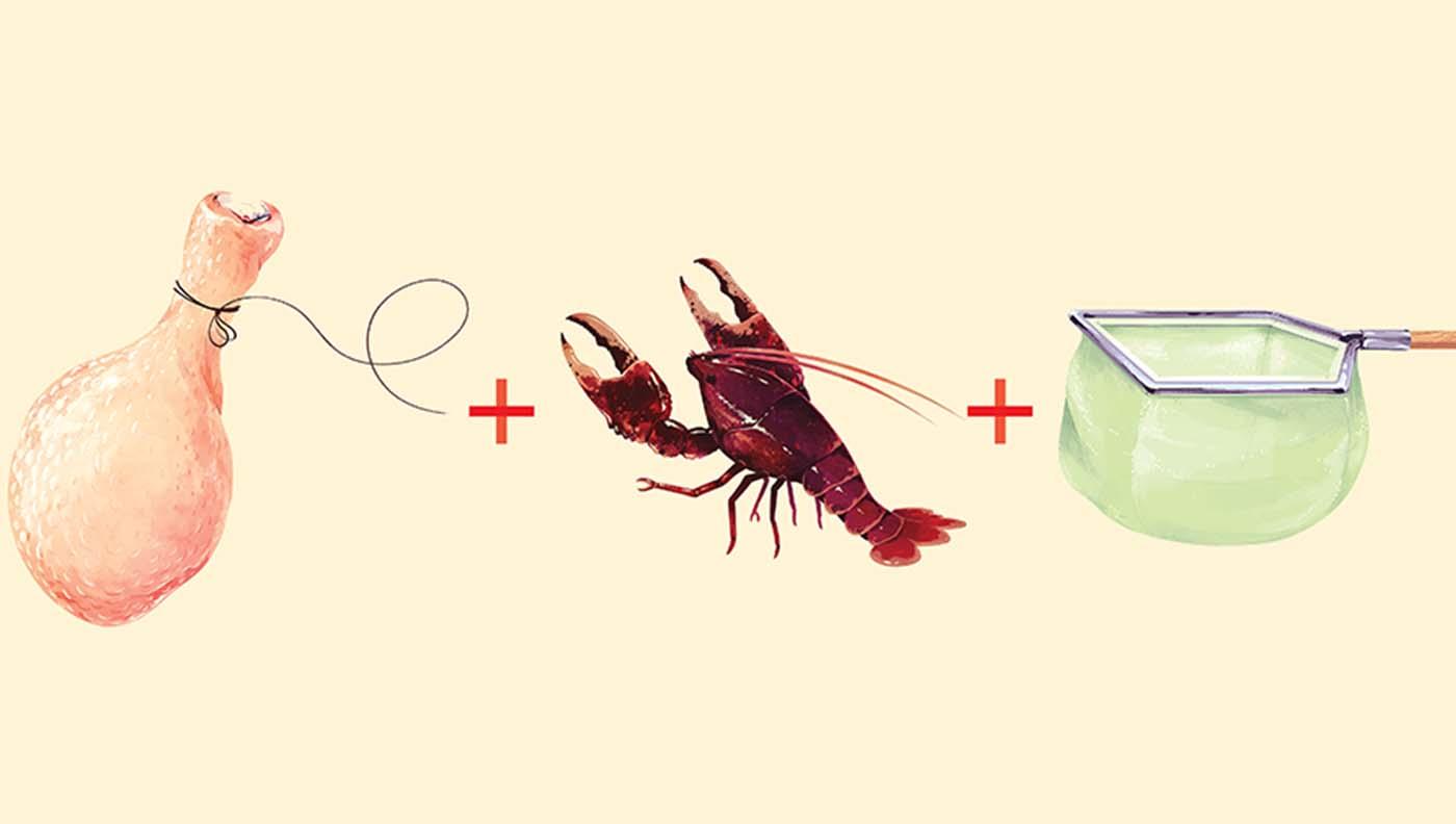 Catching crawfish