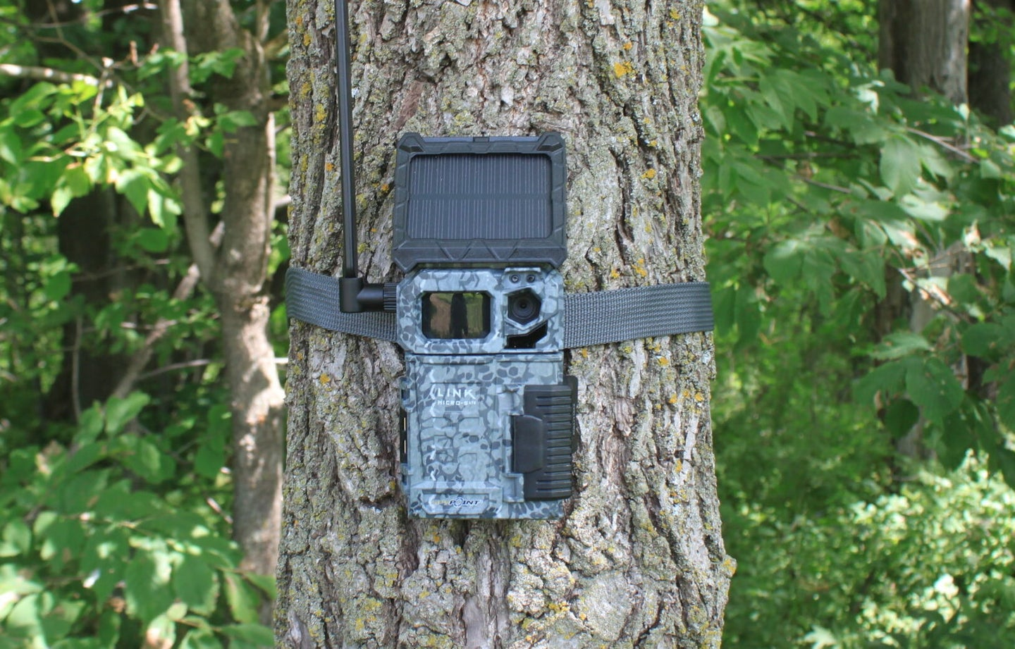Spypoint Link-Micro-S trail camera
