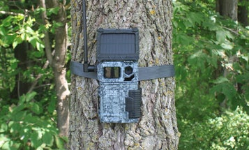 Trail Camera Review: Spypoint Link-Micro-S