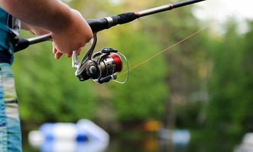 Best Fishing Reels For How You Fish