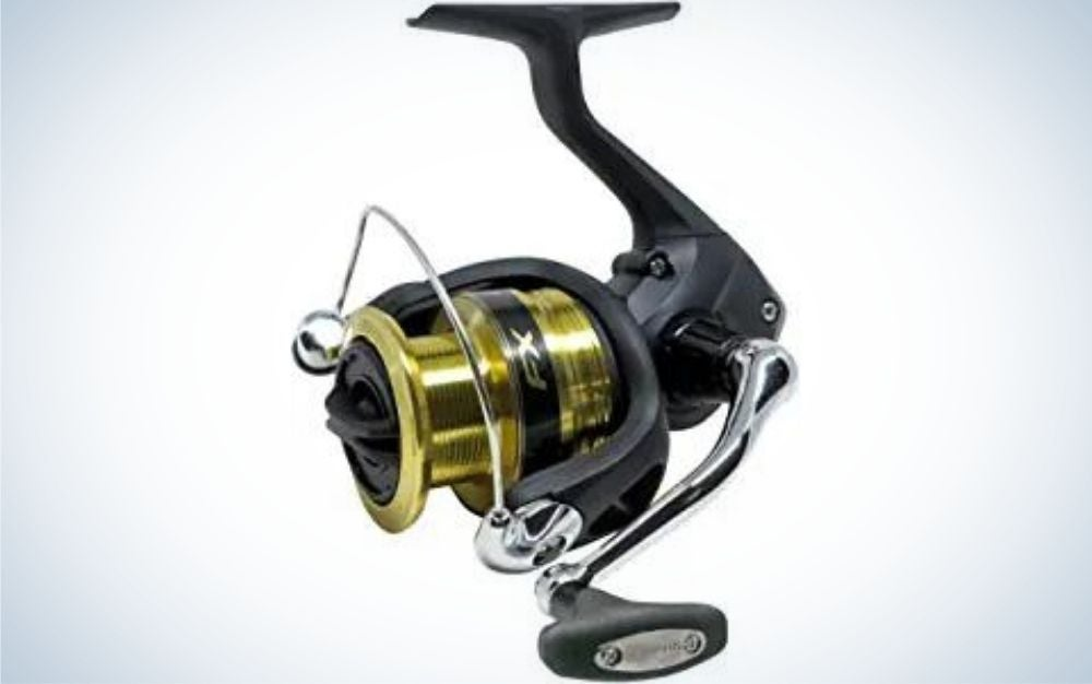 The Shimano FX are the best Shimano reels on a budget