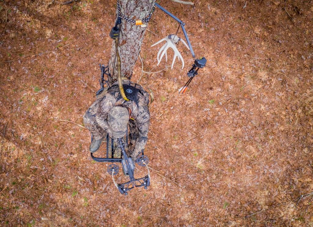 Crossbow hunter in treestand