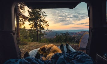 The Best Sleeping Bags for Any Camping Trip