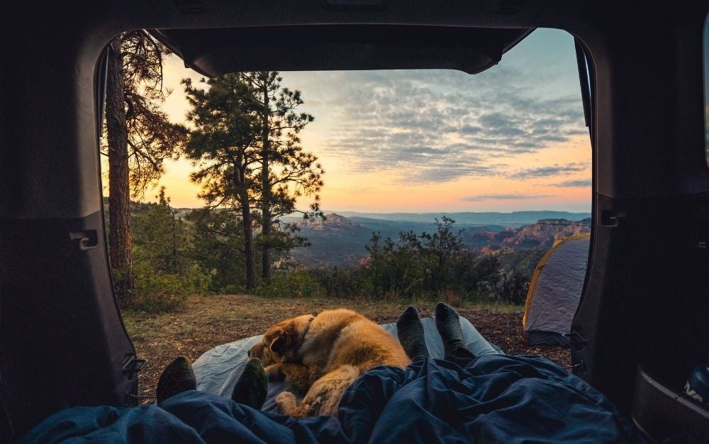People and dog resting on the mattress with a beautiful camping view