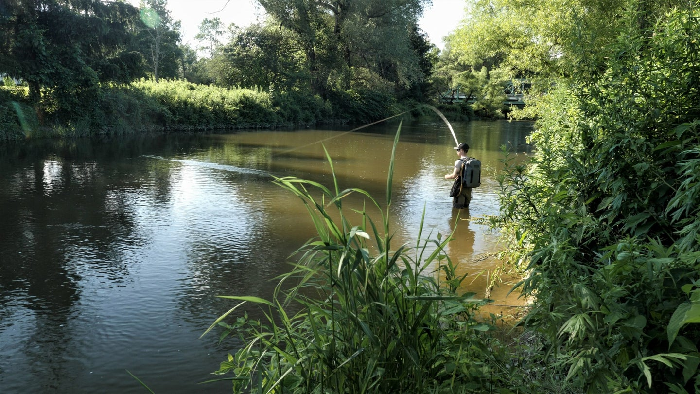 A fly fisherman casts for trout in the summer