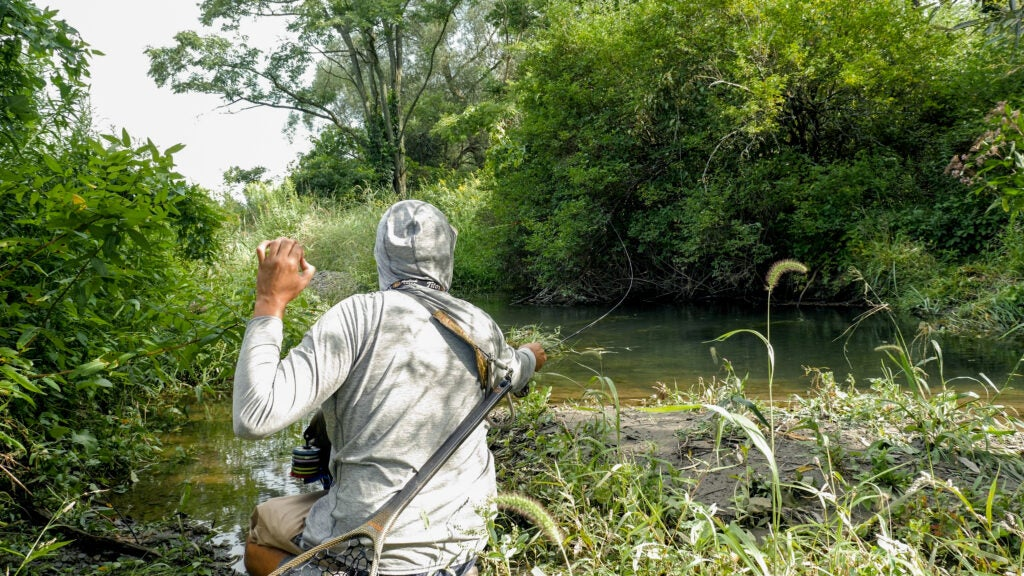 Fly angler shoots a fly at a trout.
