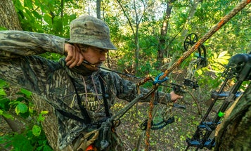 Best Compound Bow Accessories to Trick Out Your Hunting Rig