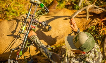 The Best Bow Stabilizer That Will Make Your Hunting Bow Quieter and More Accurate