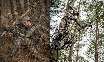 Crossbow vs Compound Bow: How to Pick the Right Hunting Bow for You