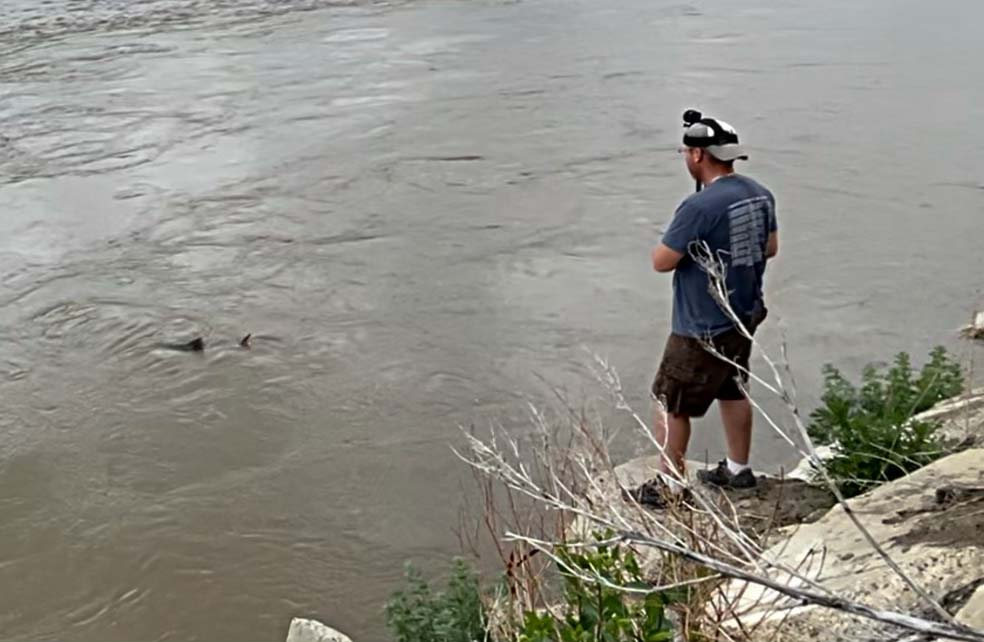 Yellowstone River bowfishing