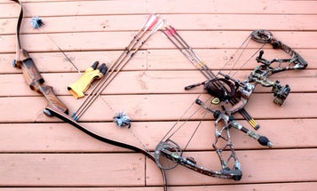 Recurve vs Compound Bow: How to Choose the Best Type of Bow for You