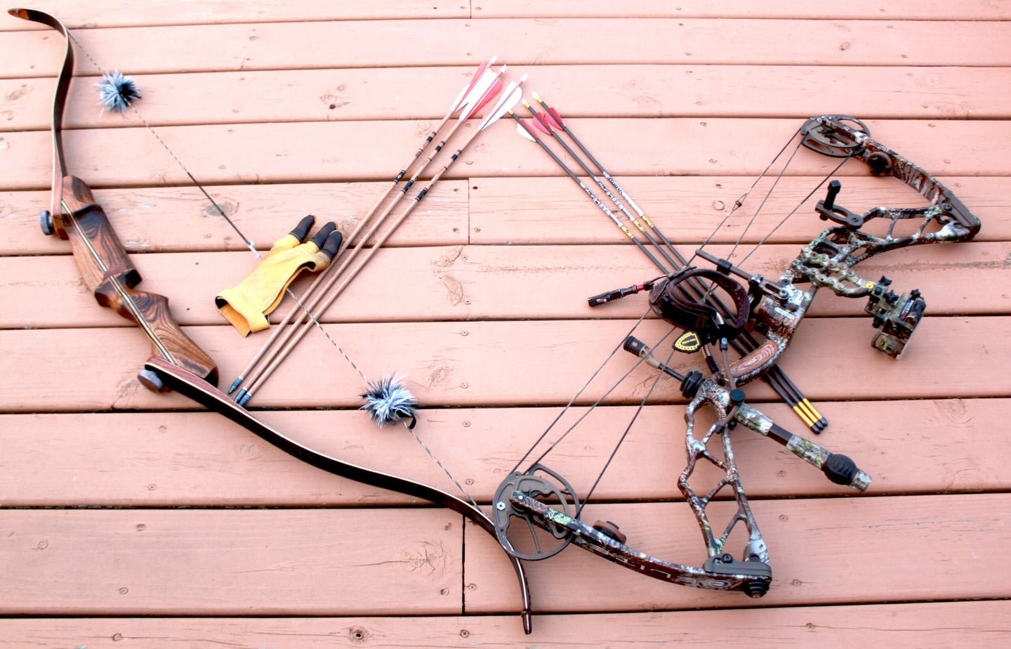 The bowhunter's decision: recurve vs compound bow