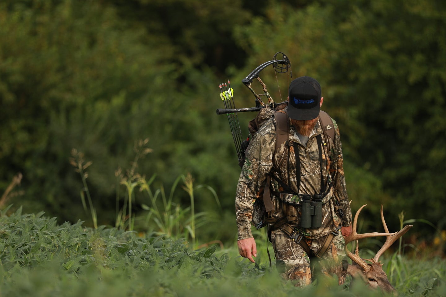 bowhunter with whitetail deer