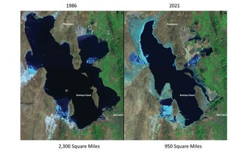 Western Waterfowl Habitat Dries Up As Great Salt Lake Hits Lowest Levels Ever