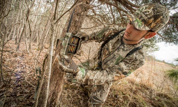 Opinion: Your Preseason Deer Scouting Efforts Don't Help You. They Help Me