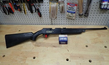 Are BB Guns Good for Hunting?