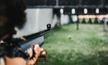 Can Anyone Buy a BB Gun? Navigating the Legalities