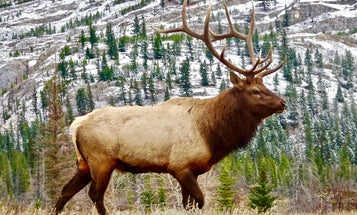 Senate's Huge Infrastructure Bill Could Significantly Impact Hunters and Anglers