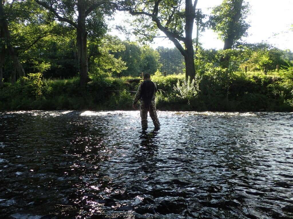 Angler standing in a shallow river.