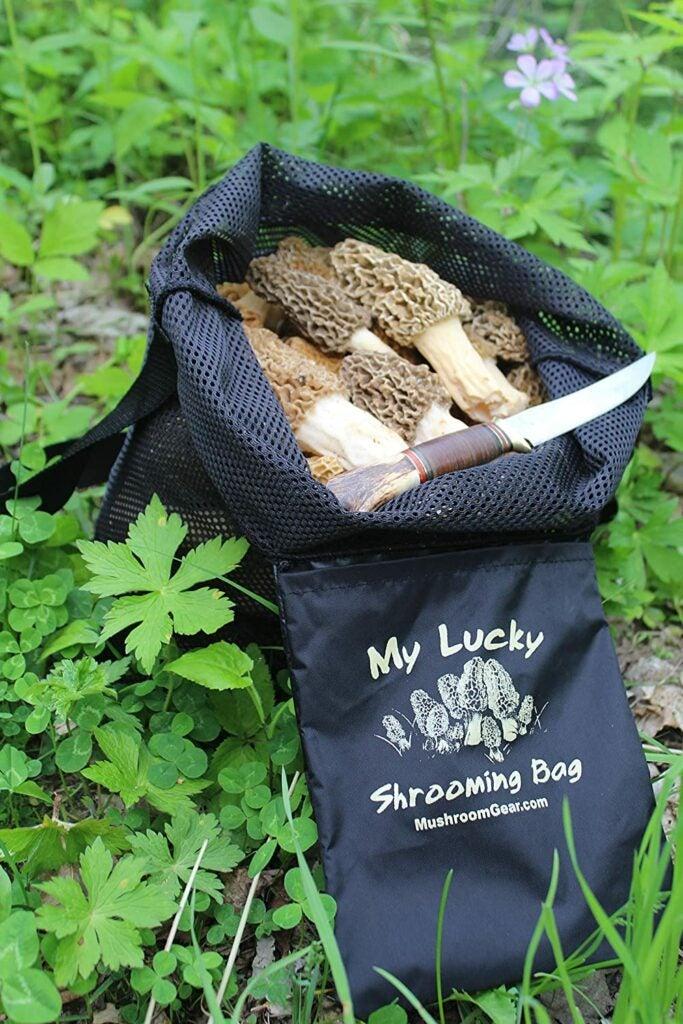 mushroom hunting bag and knife.