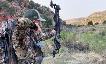 Do You Need to Shoot 100 Yards to Bowhunt the West?